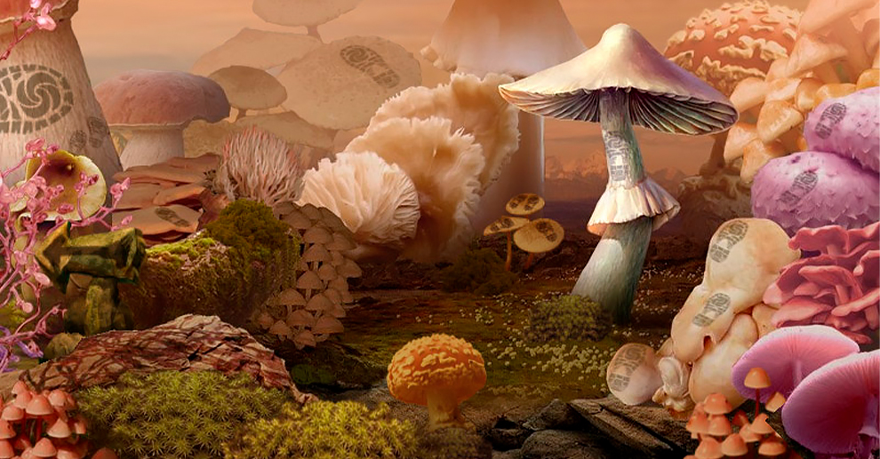 Screenshot № 4. Download Mushroom Age and more games from Realore website